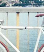 Bicicletas de Piñon fijo