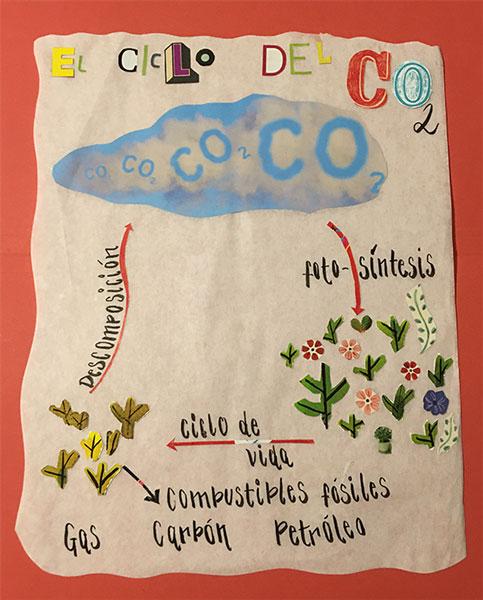 El ciclo del Co2